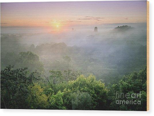 Sunrise In Tikal Wood Print