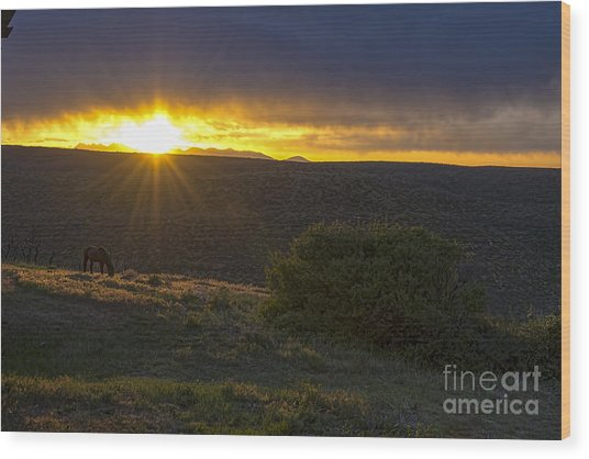 Sunrise Mesa Verde Wood Print by Keith Ducker