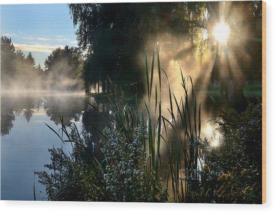 Sunrise Mist At A Marsh Wood Print