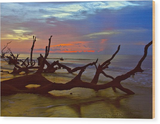 Sunrise On Bulls Island Wood Print