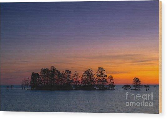 Sunrise On Lake Mattamuskeet Wood Print