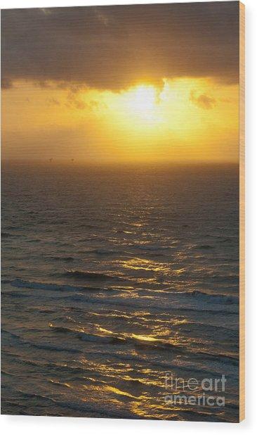 Sunrise On The Gulf Wood Print by Barbara Shallue