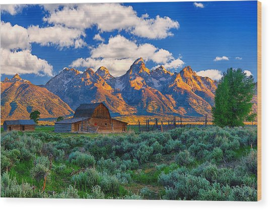 Sunrise On The Tetons Limited Edition Wood Print