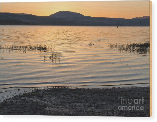 Sunrise On Tomales Bay - 262 Wood Print by Stephen Parker