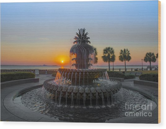 Sunrise Over Charleston Wood Print