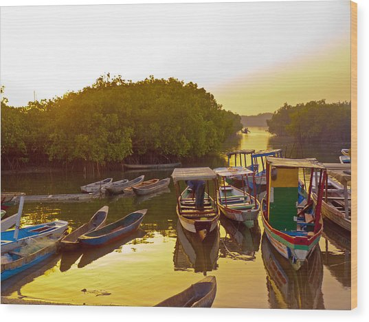 Sunrise Over Gambian Creek Wood Print