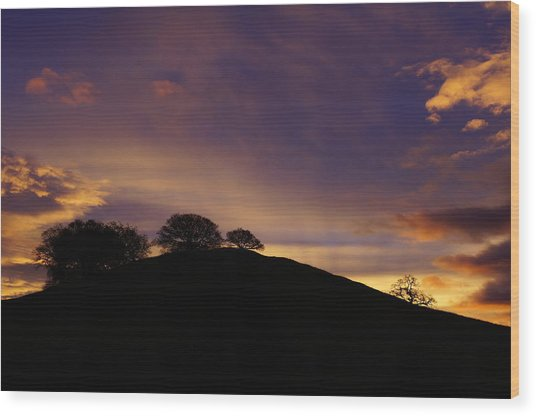 Sunrise Over Hidden Lakes Park Wood Print by Colleen Renshaw
