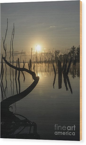Sunrise Over Manasquan Reservoir II Wood Print