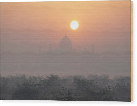 Sunrise Over The Taj Wood Print