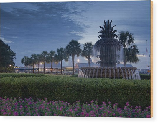 Sunrise Pineapple Fountain Wood Print