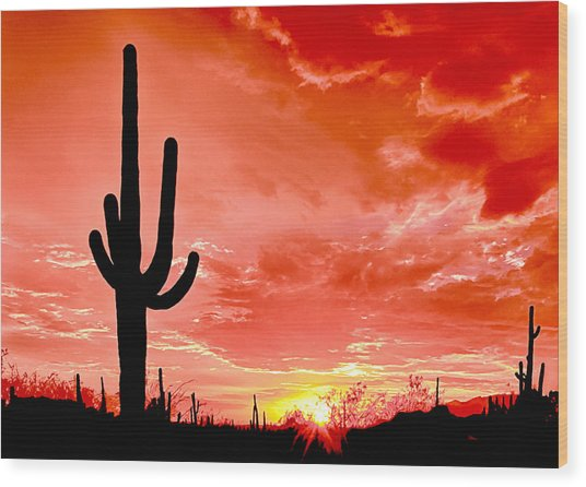 Sunrise Saguaro National Park Wood Print