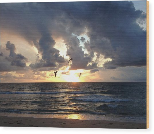 Sunrise Seagulls Wood Print