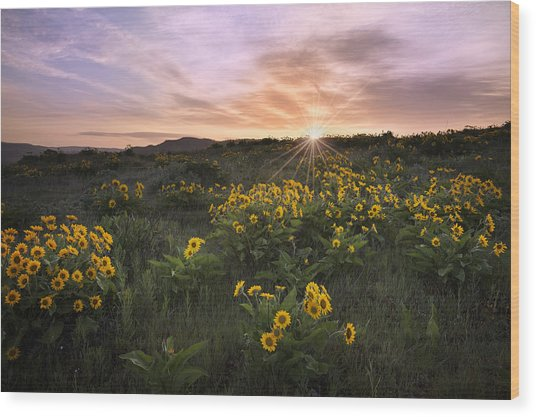 Sunrise Service Wood Print