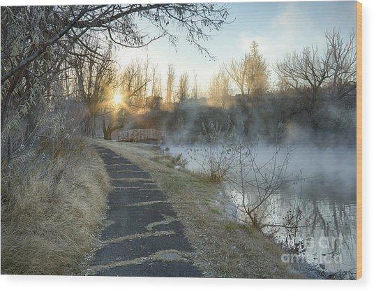 Sunrise Trail Wood Print
