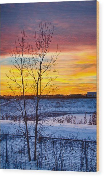 Sunset 1-3-14 Northern Illinois 002  Wood Print by Michael  Bennett