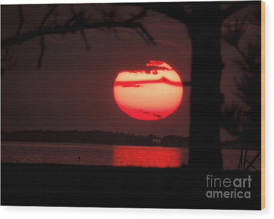 Sunset 3 Wood Print by Stephanie Kendall