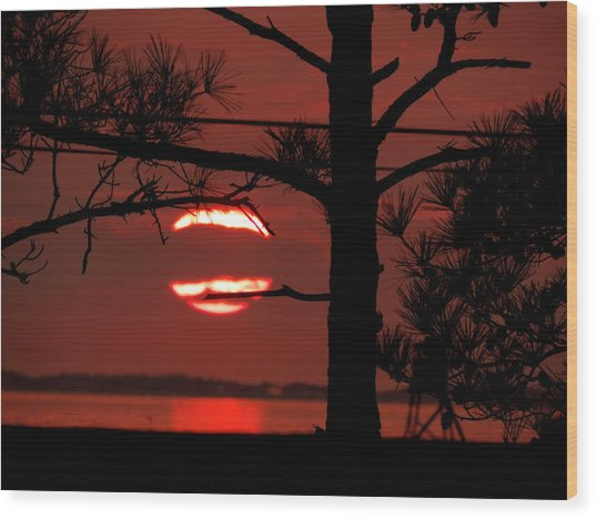 Sunset 4 Wood Print by Stephanie Kendall