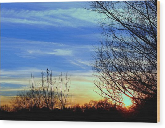 Sunset And 3 Birds Wood Print by Rima Biswas