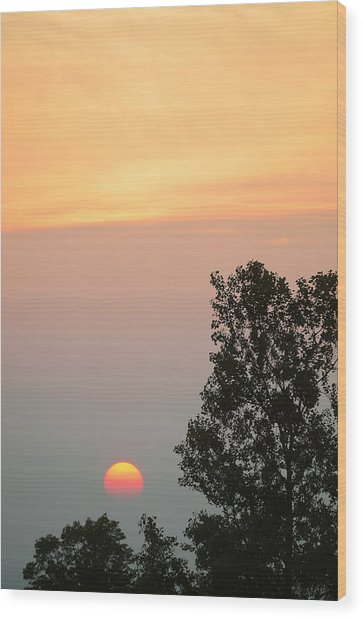 Sunset At Forks Of The Credit Park Wood Print