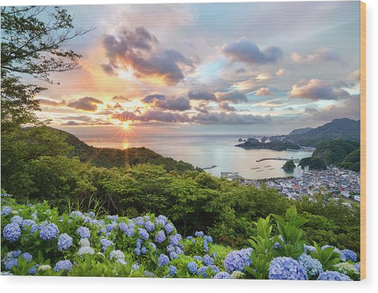 Sunset At Hydrangea Hills Wood Print by Tommy Tsutsui