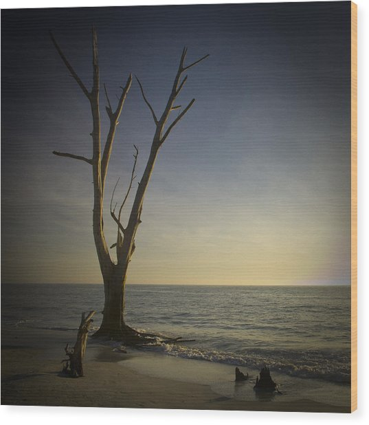 Sunset At Lovers Key Wood Print