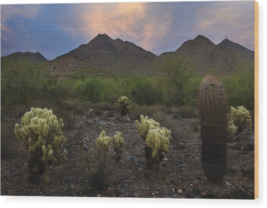 Sunset At Mcdowell Mountains In Scottsdale Az Usa Wood Print