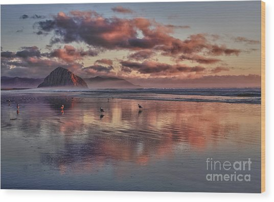 Sunset At Morro Strand Wood Print