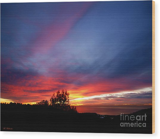 Sunset At Mount Carmel  Haifa 01 Wood Print
