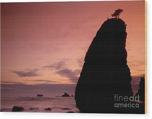 Sunset At Rialto Beach Wood Print by Keith Kapple