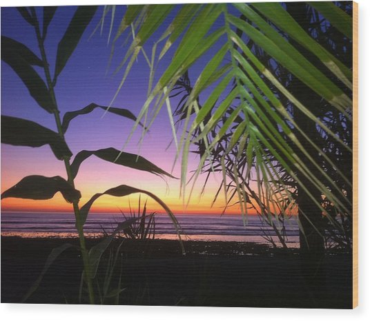 Sunset At Sano Onofre Wood Print