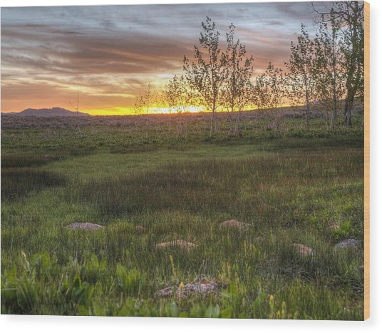 Sunset At Sunflower Flats Wood Print