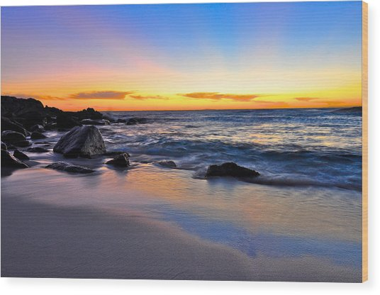 Sunset At The Beach Wood Print by Sally Nevin