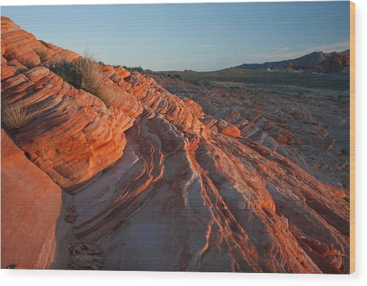Sunset At The Valley Of Fire Wood Print