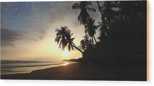 Sunset Beach Wood Print by Tropigallery -