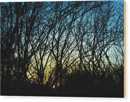 Sunset Behind Trees Wood Print