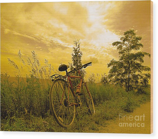 Sunset Biking Wood Print