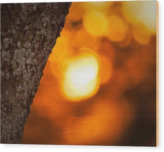 Sunset Bokeh Wood Print