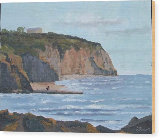 Sunset Cliffs Ca Wood Print by Raymond Kaler
