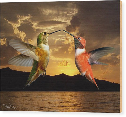 Sunset Courtship Wood Print