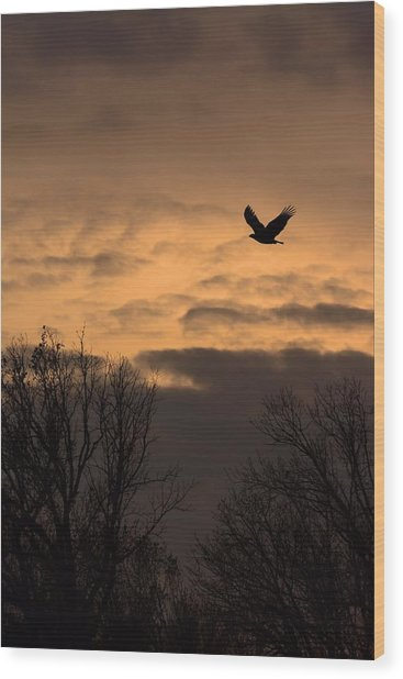 Sunset Eagle Wood Print