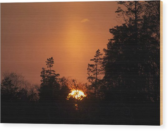 Sunset Flare Wood Print