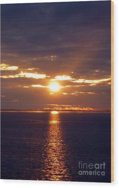 Sunset From Peace River Bridge Wood Print
