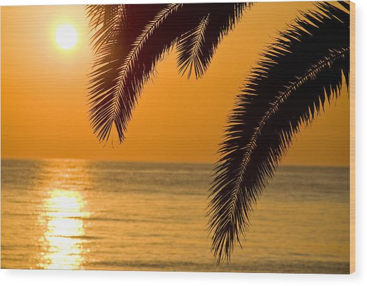 Sunset Golden Color With Palm Wood Print