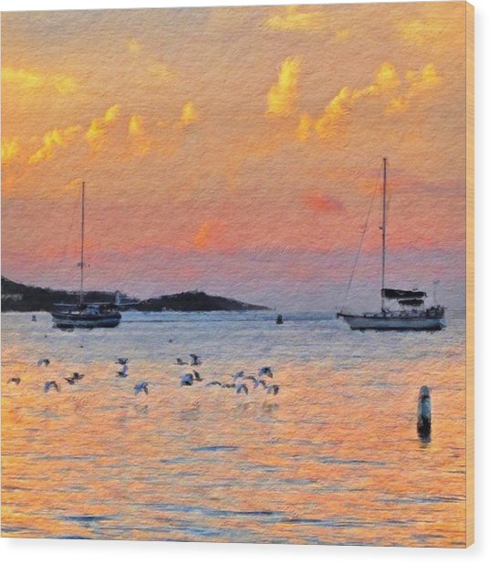 Sunset Harbor With Birds - Square Wood Print