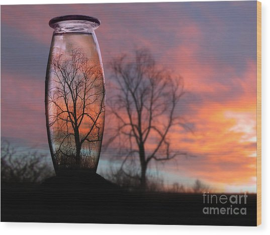 Sunset In A Bottle Wood Print