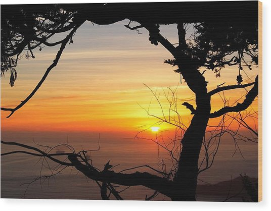 Sunset In A Tree Frame Wood Print