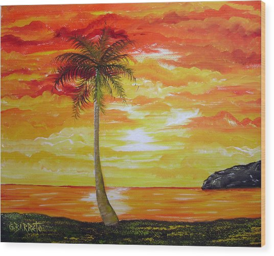 Sunset In Florida Wood Print