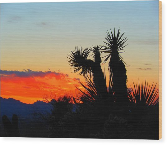 Sunset In Golden Valley Wood Print