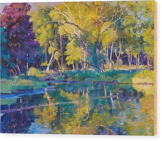 Sunset In Hinsdale Park Wood Print