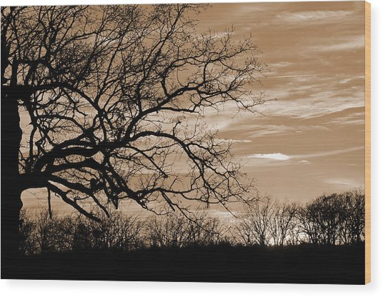 Sunset In Sepia C  Wood Print